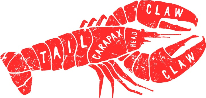 image showing the various parts of a lobster